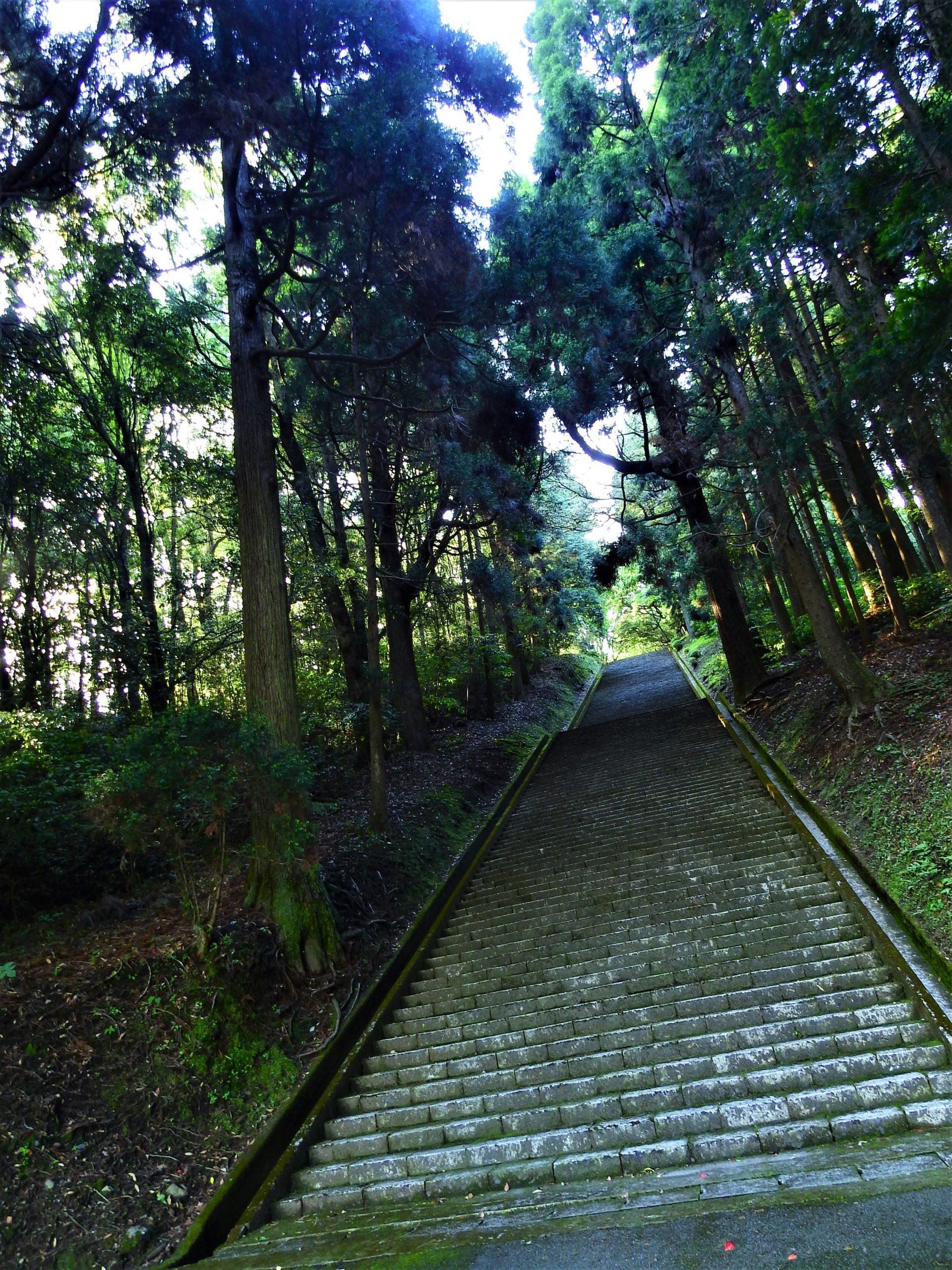 鹿児島県 陵