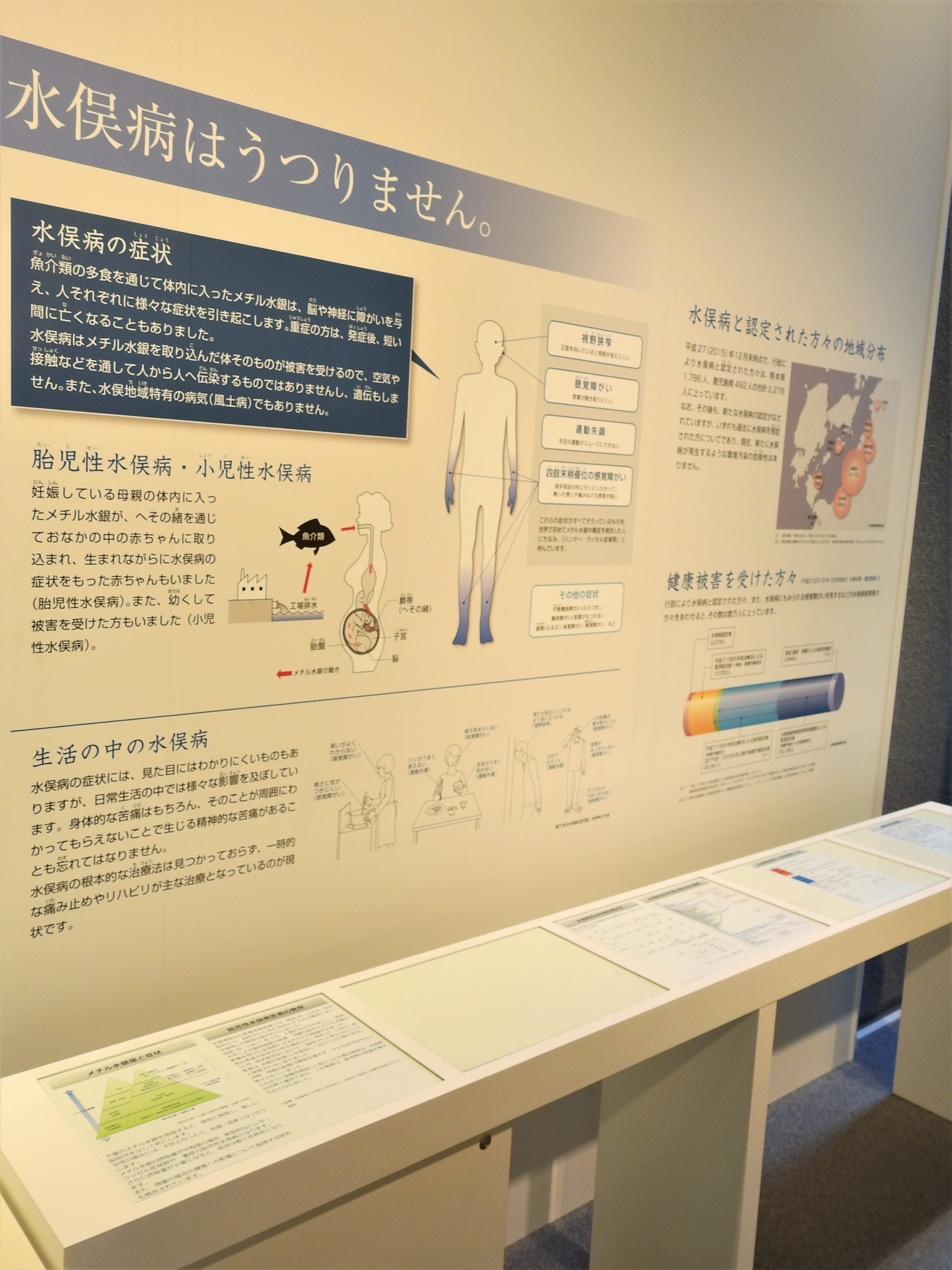 熊本県 水俣病資料館