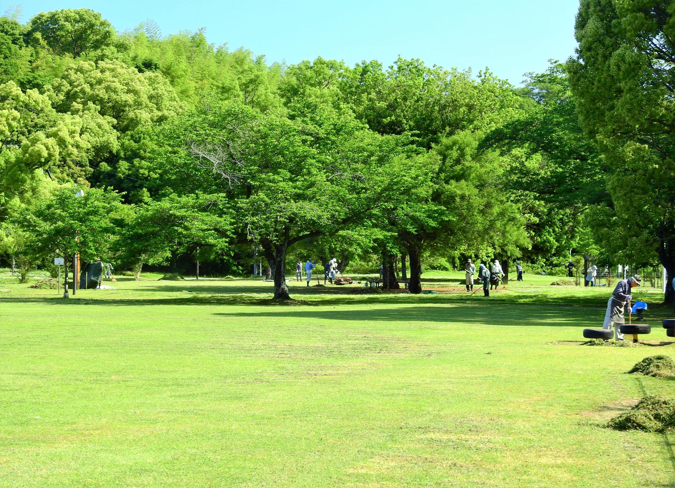 熊本県 八景水谷公園