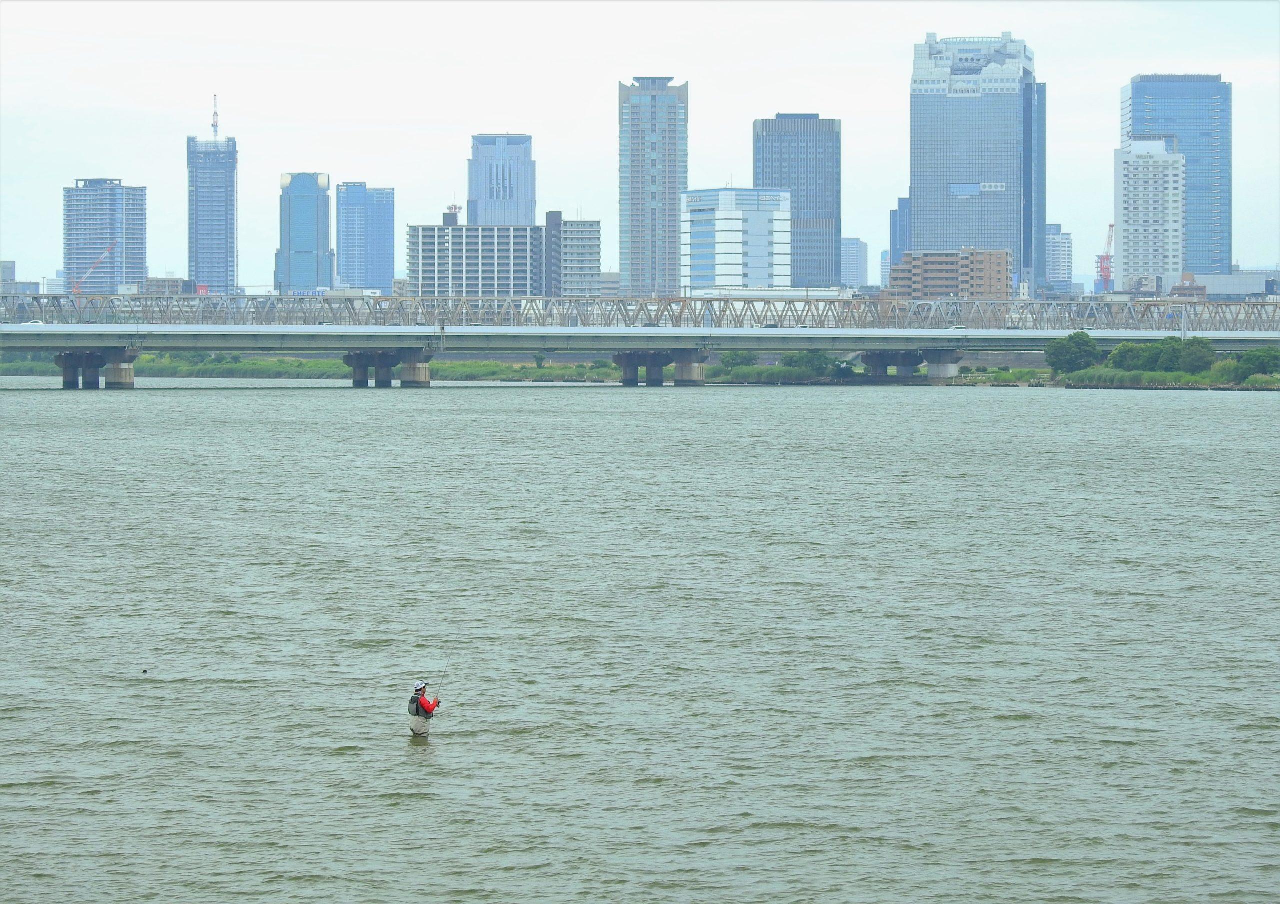 大阪府 淀川