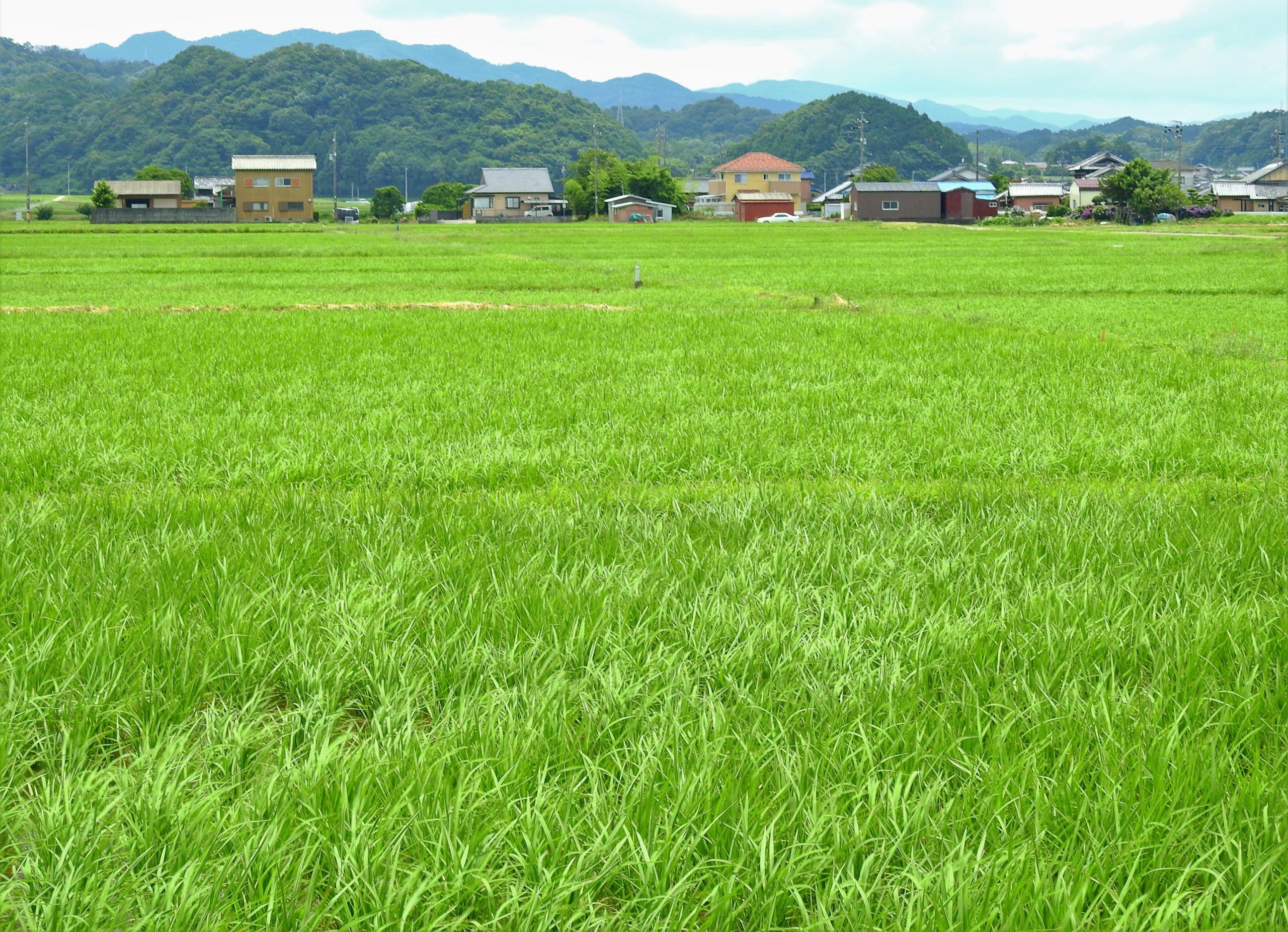 三重県 松阪市