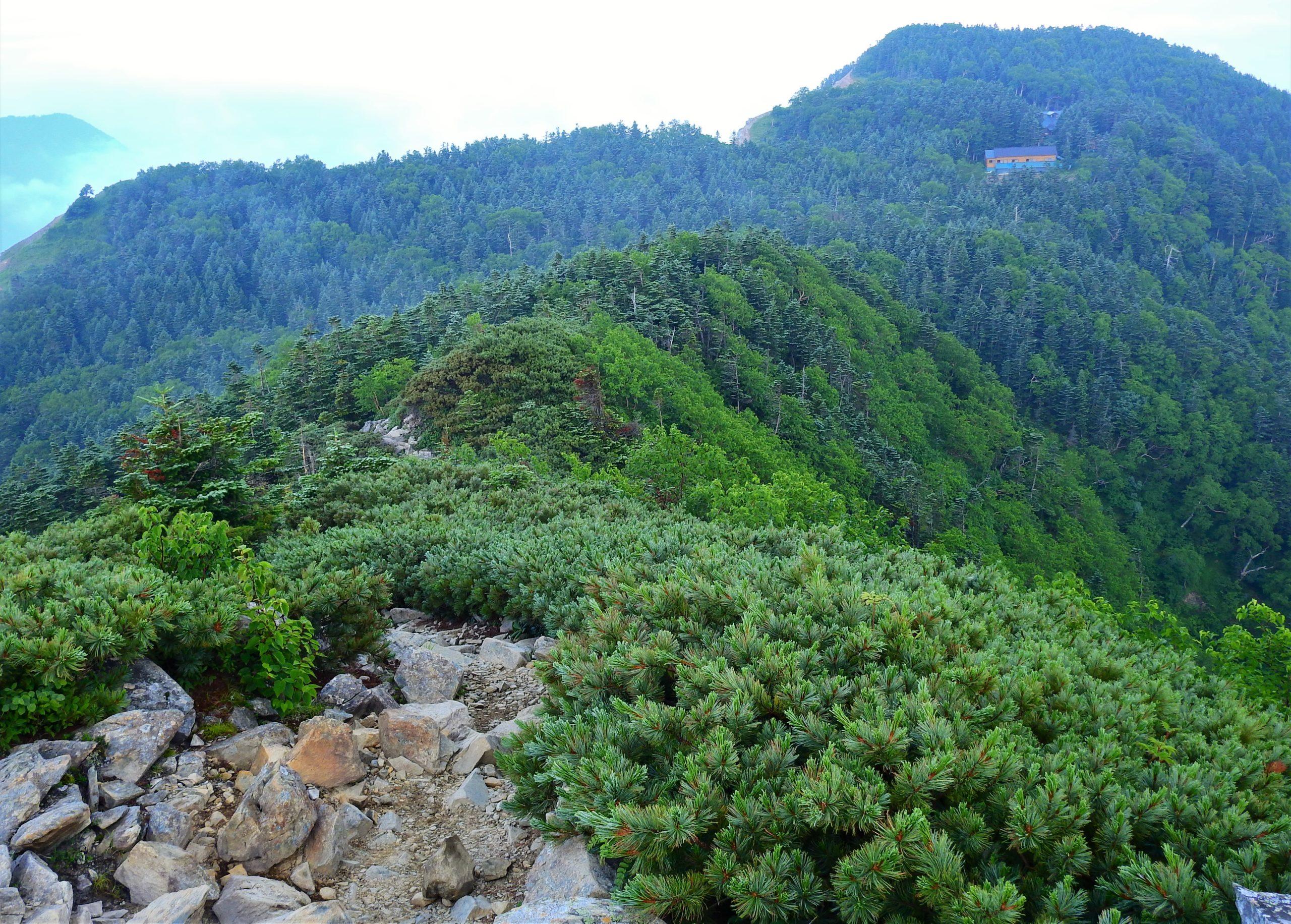 南アルプス 三伏山