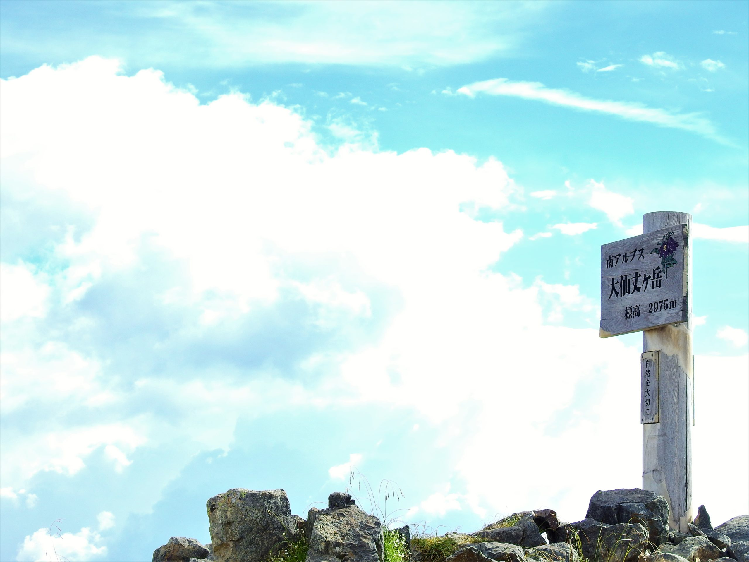 南アルプス 大仙丈ヶ岳