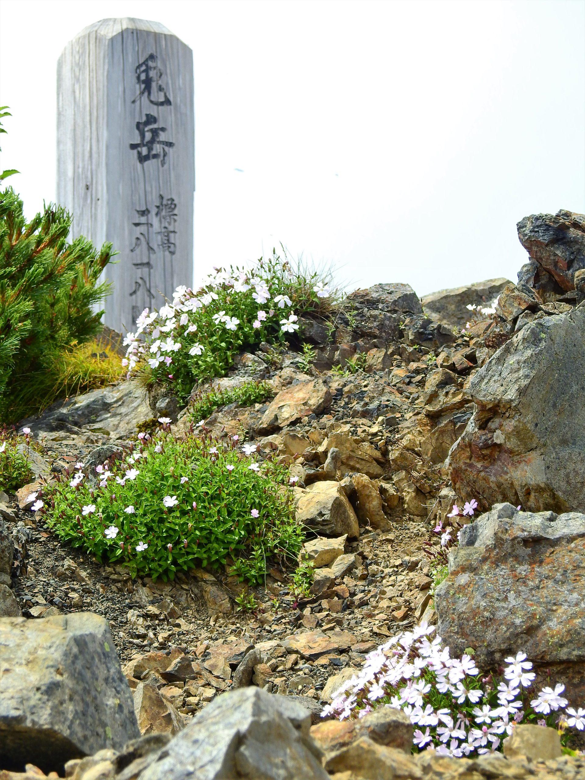 南アルプス 兎岳