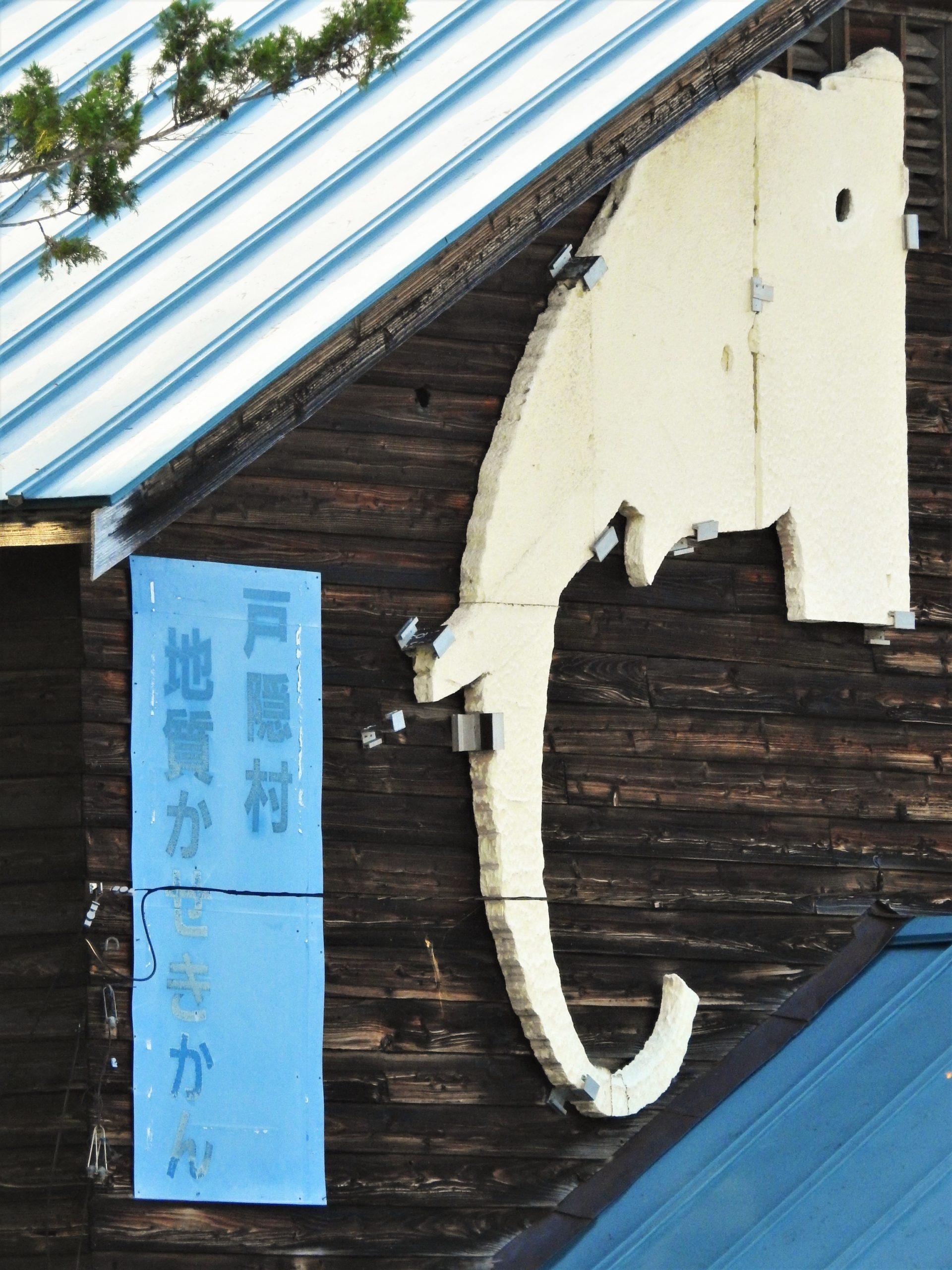 長野県 戸隠地質化石博物館