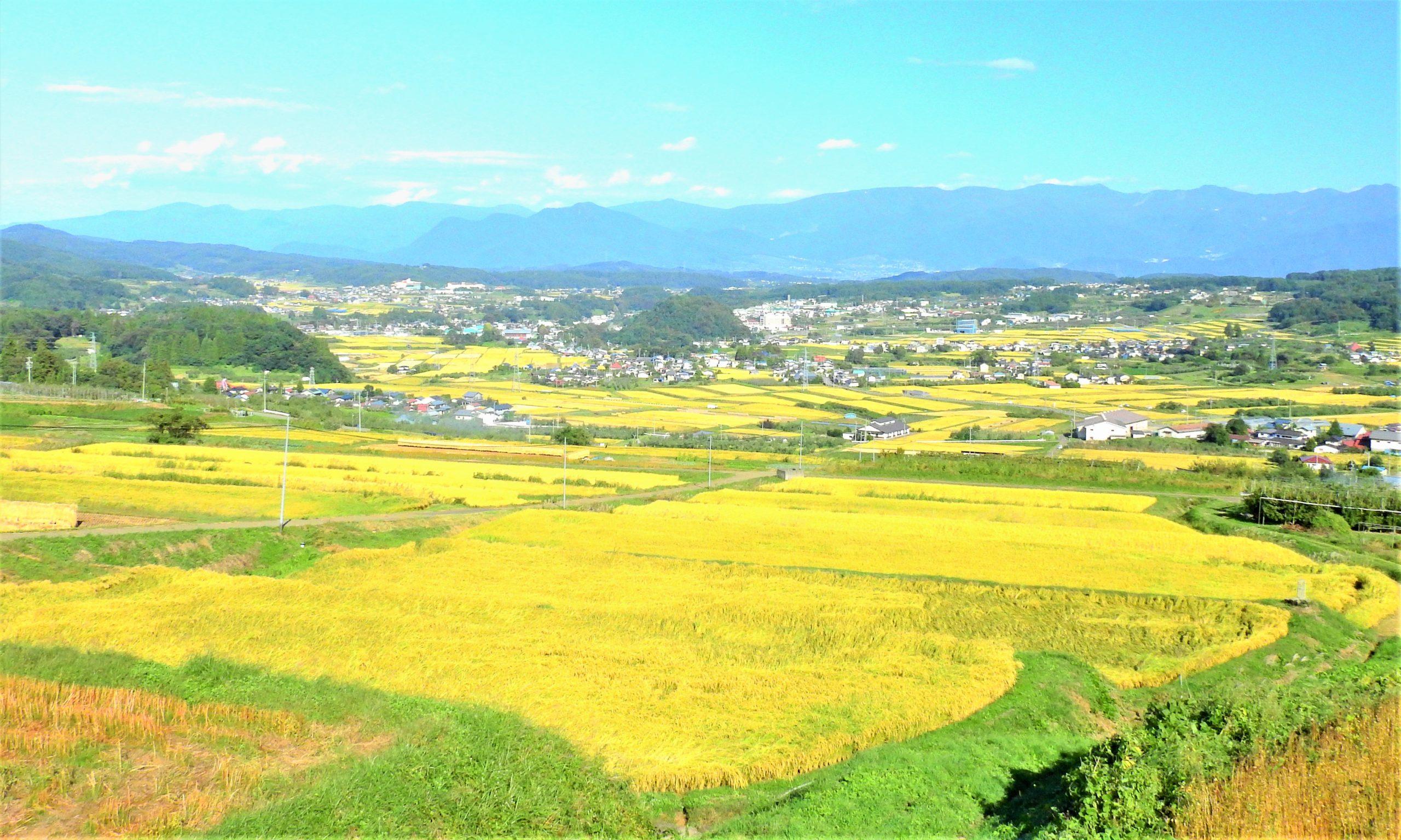 長野県 長野市