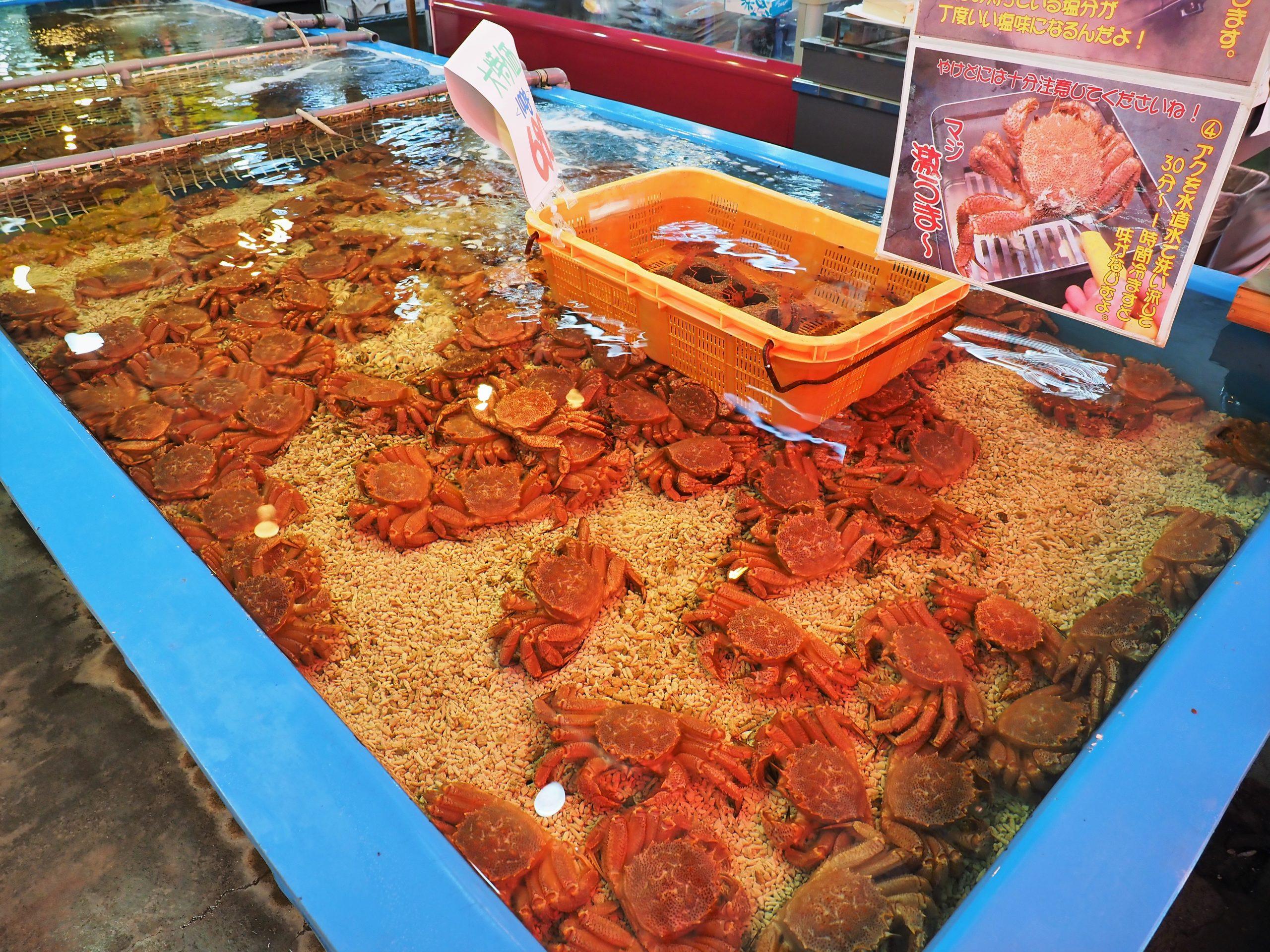 北海道 札幌中央市場 場外市場