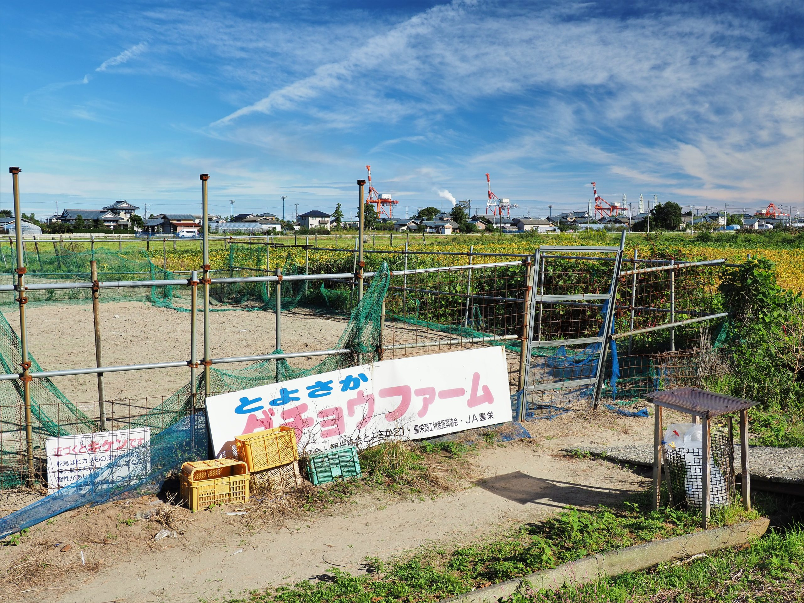 新潟県 道の駅豊栄