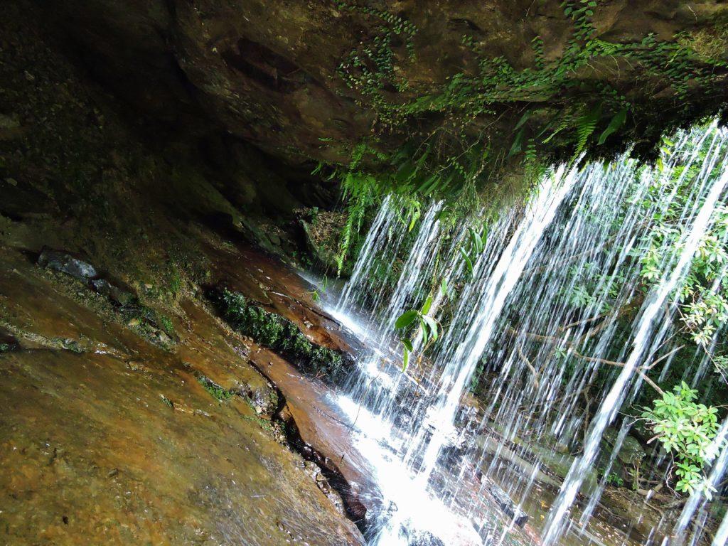 沖縄県 西表島 サンガラの滝