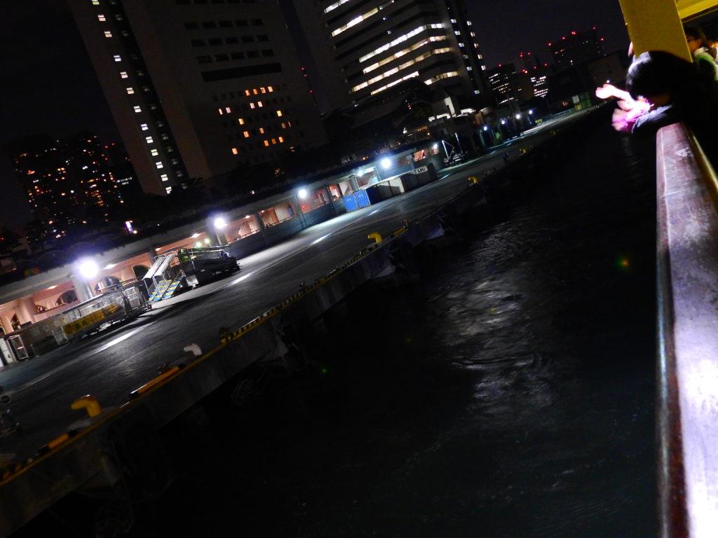 東京都 竹芝桟橋 さるびあ丸