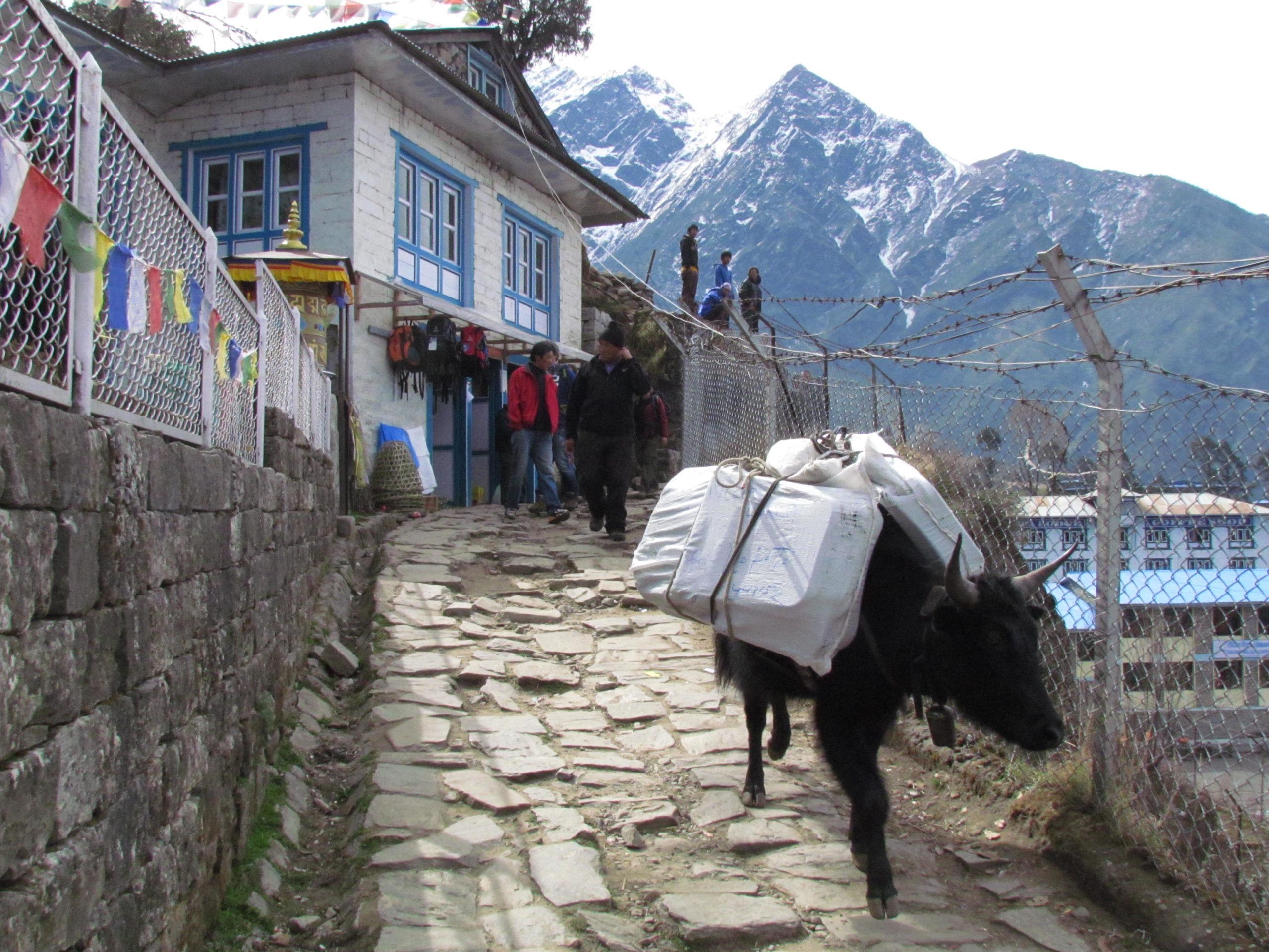 ネパール メラ・ピーク ルクラ