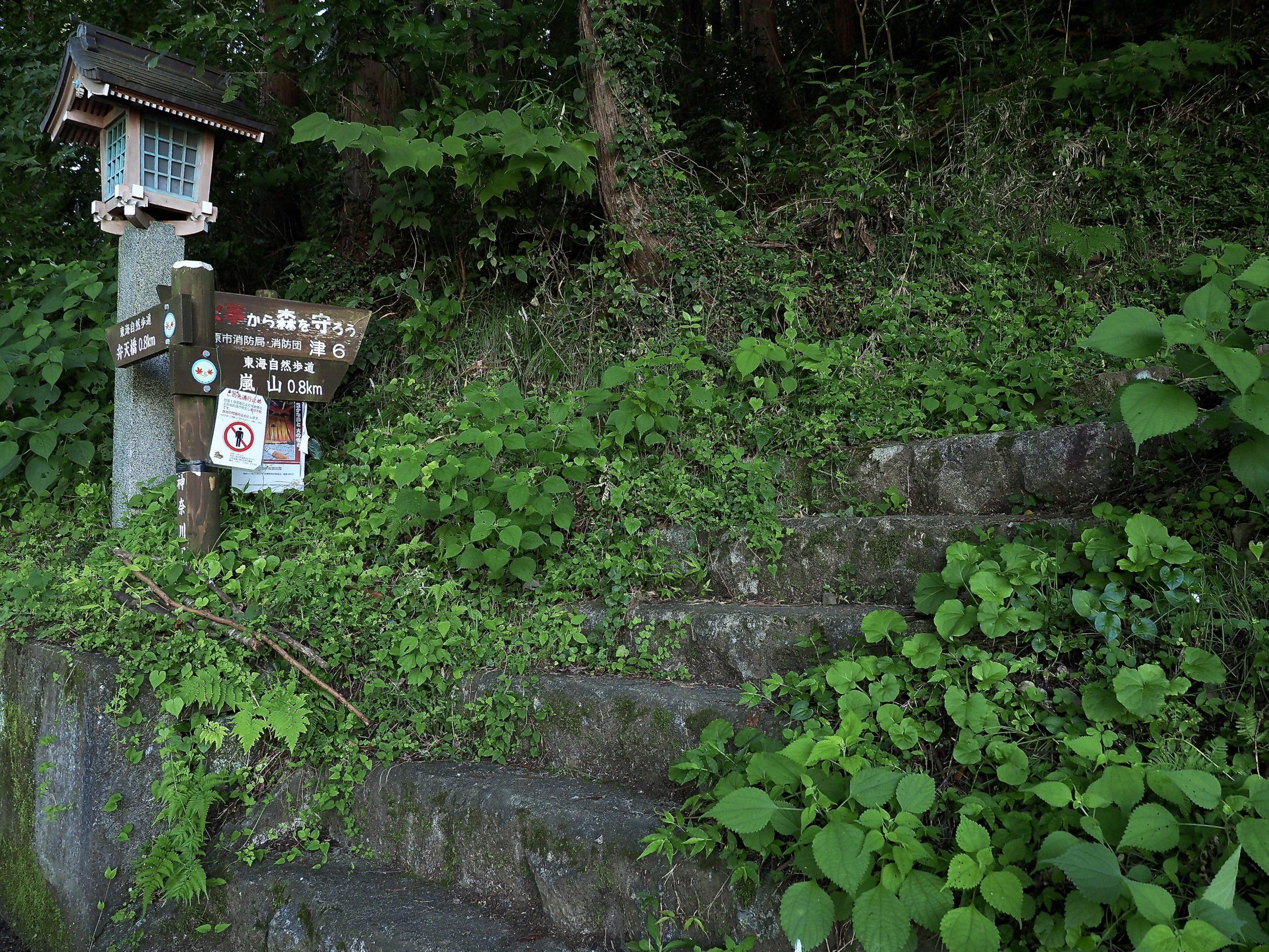 神奈川県 相模湖