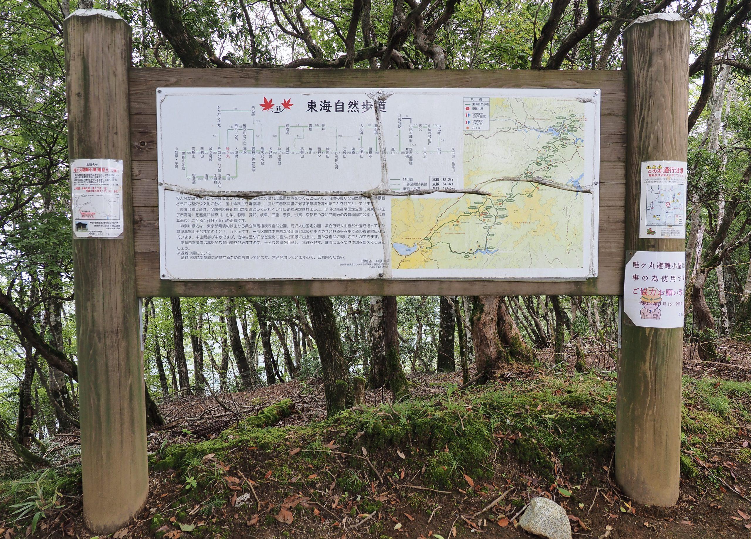 神奈川県 畦ヶ丸