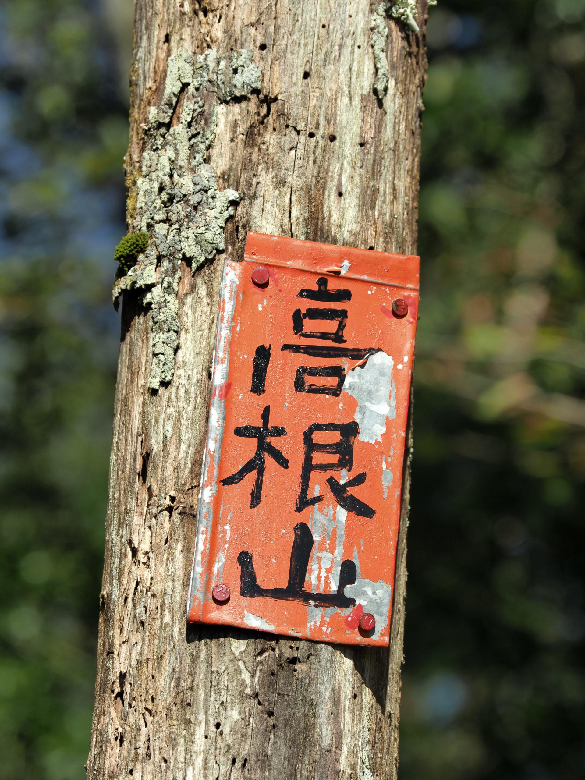 静岡県 高根山