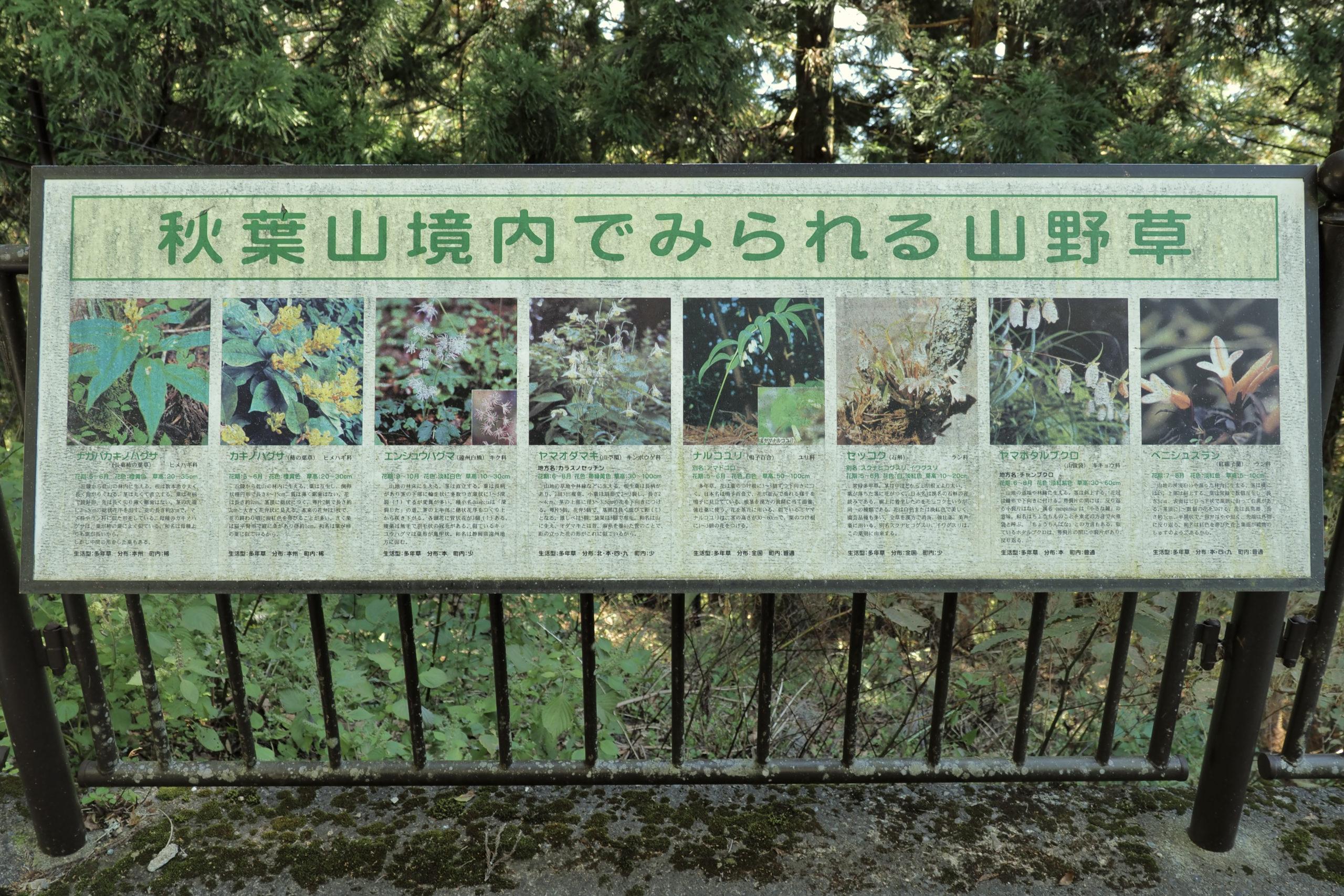 静岡県 秋葉山 秋葉山本宮秋葉神社