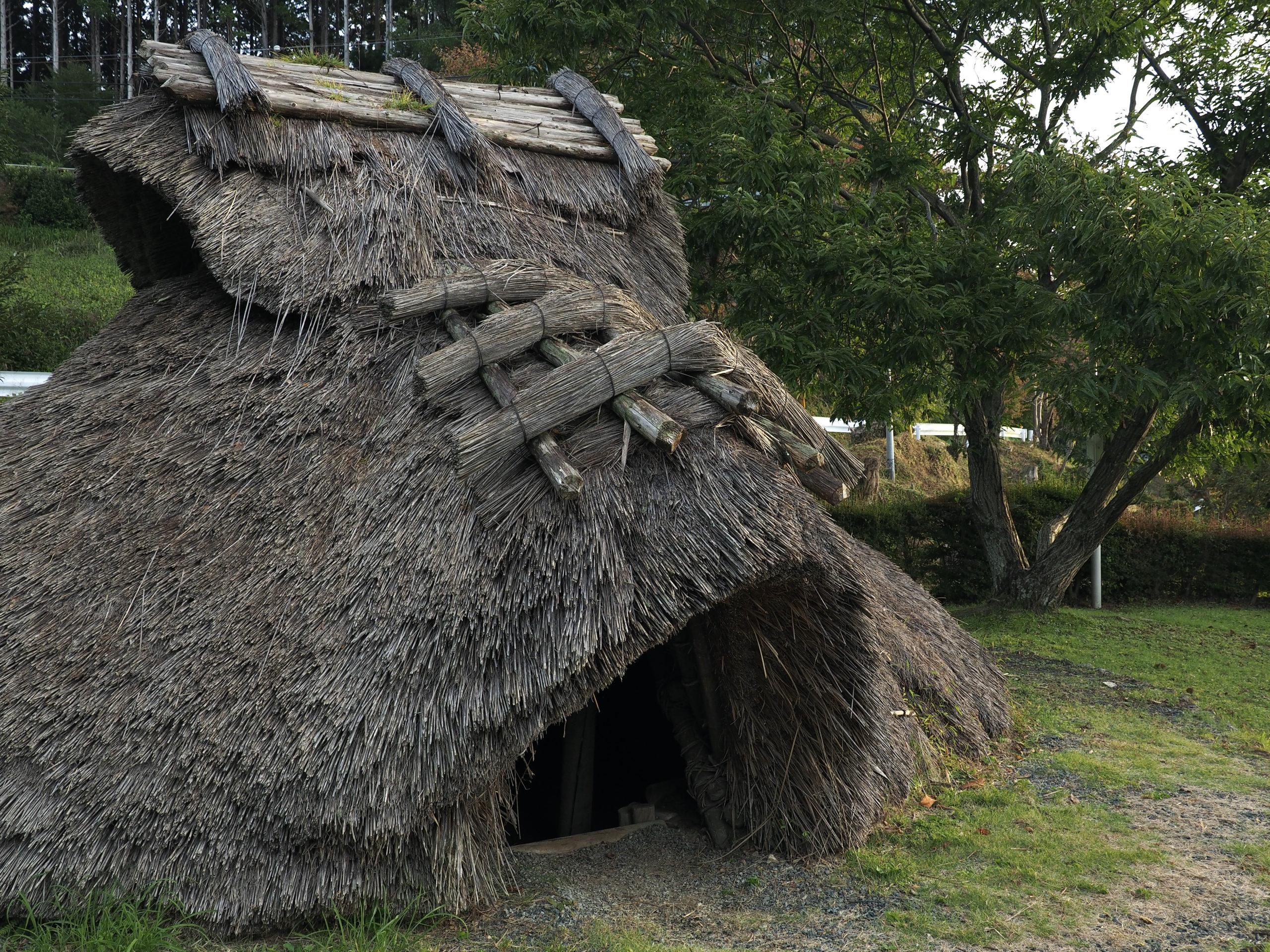 静岡県 ヒラシロ遺跡