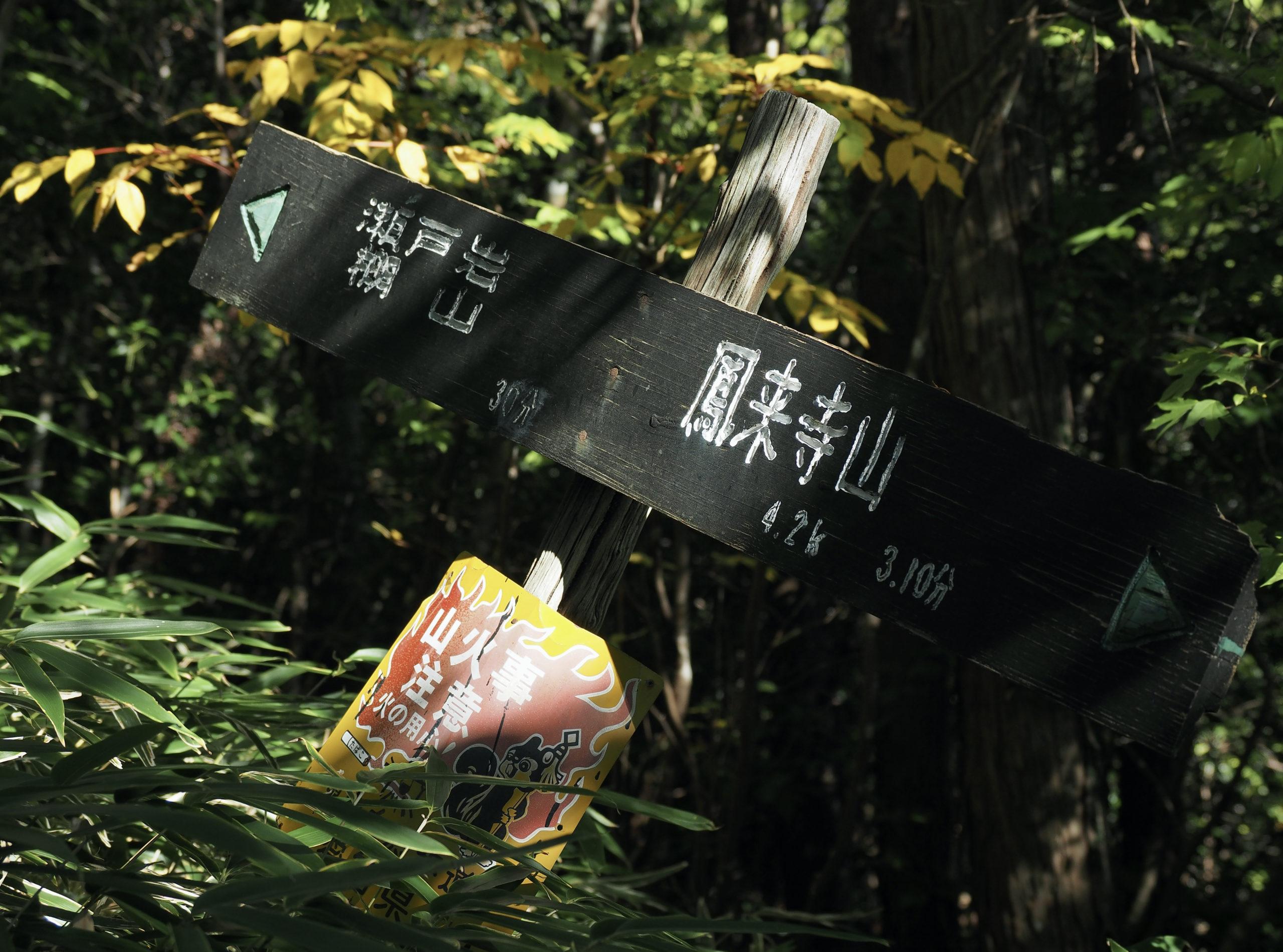 愛知県 棚山高原