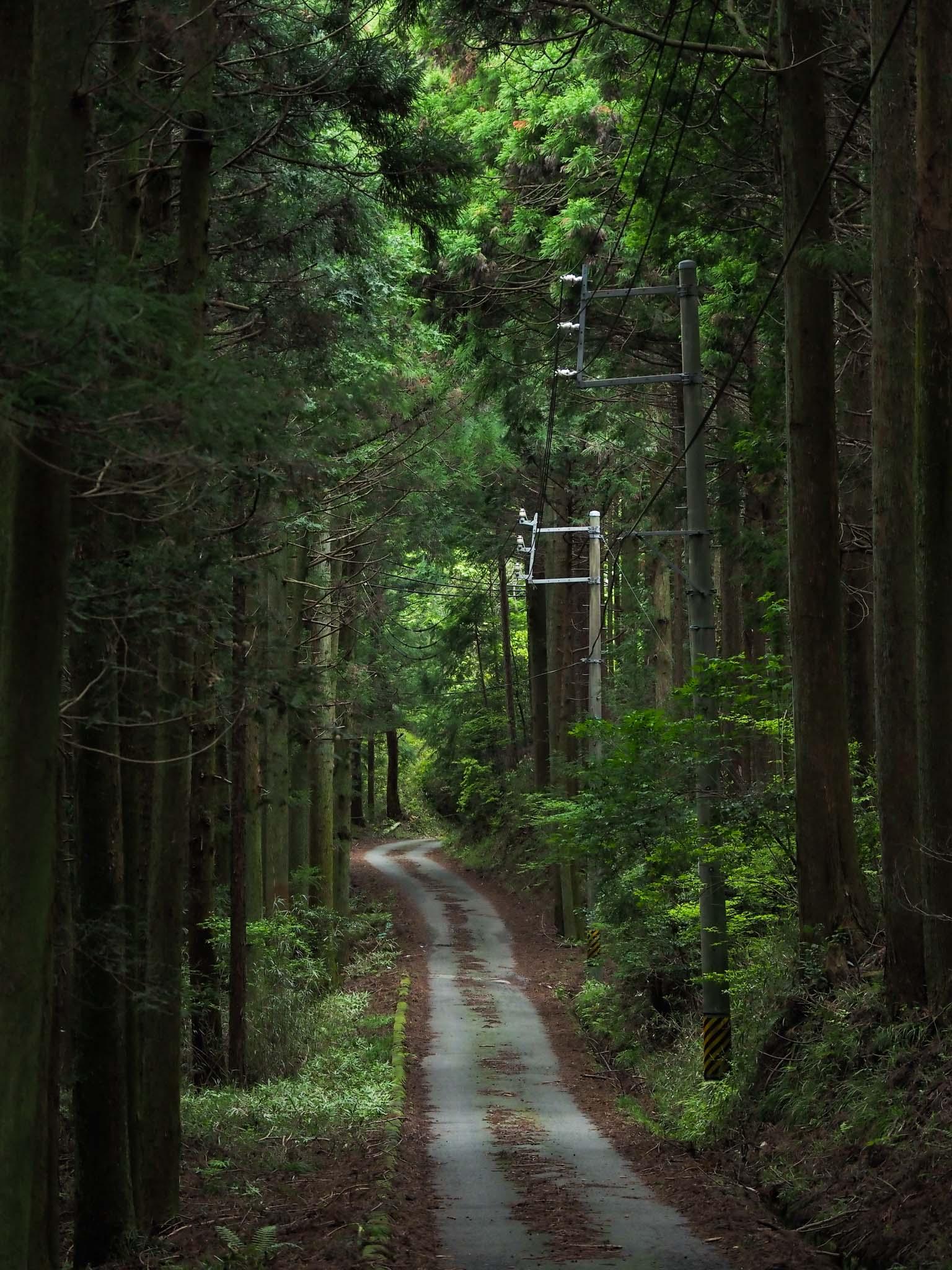三重県 鈴鹿市 東海自然歩道