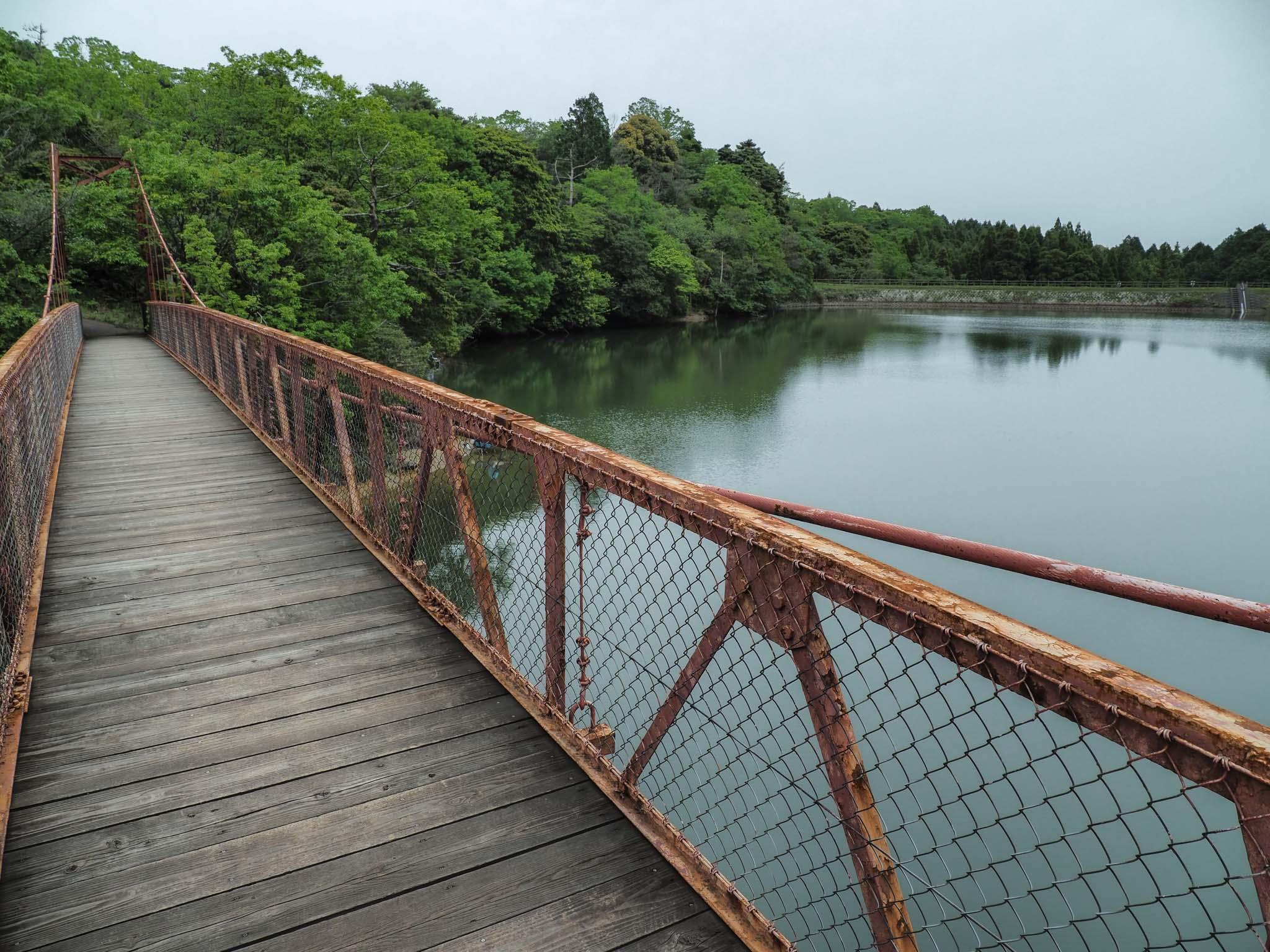 三重県 観音山公園 新池 東海自然歩道