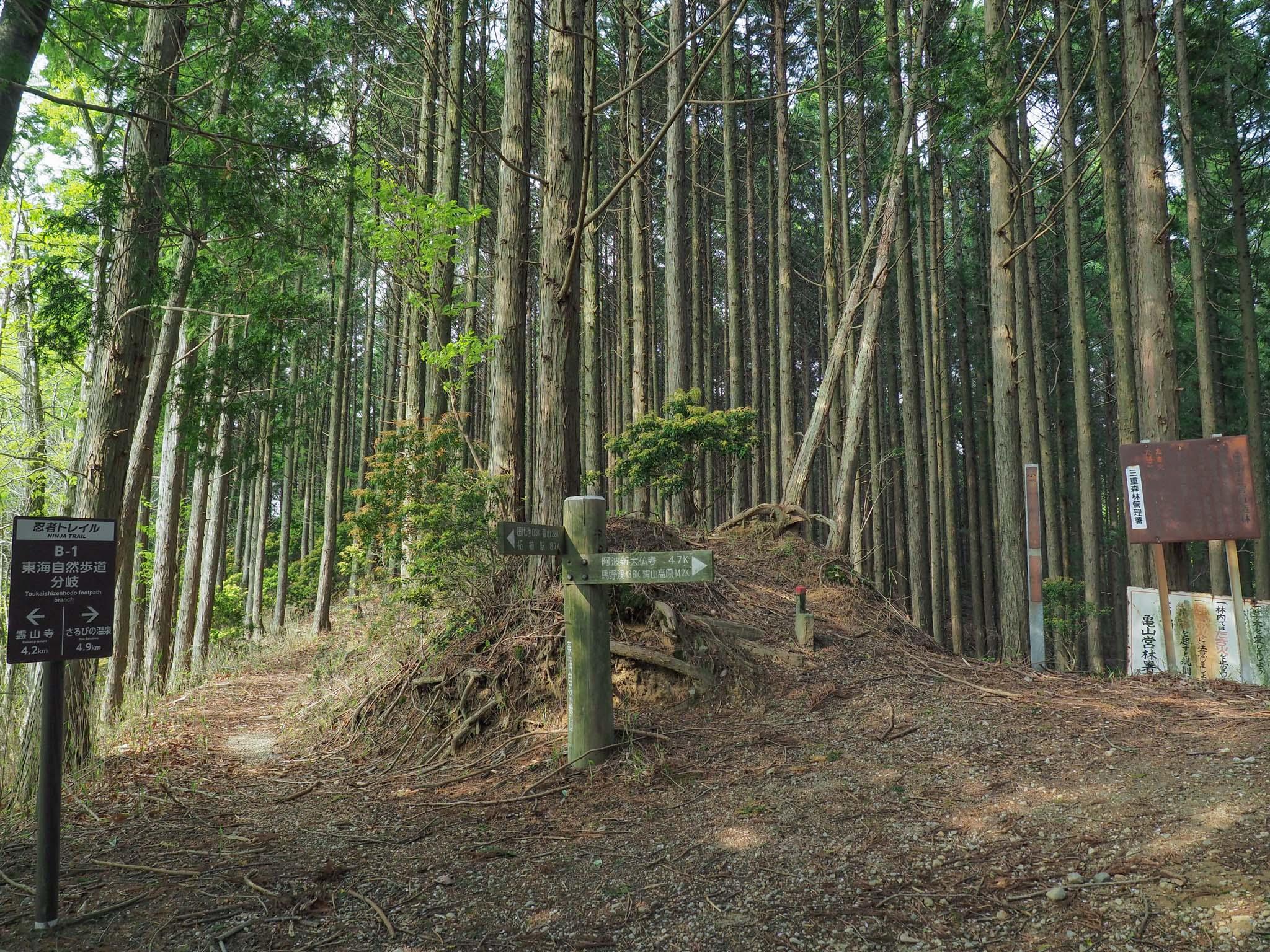 三重県 田代湖