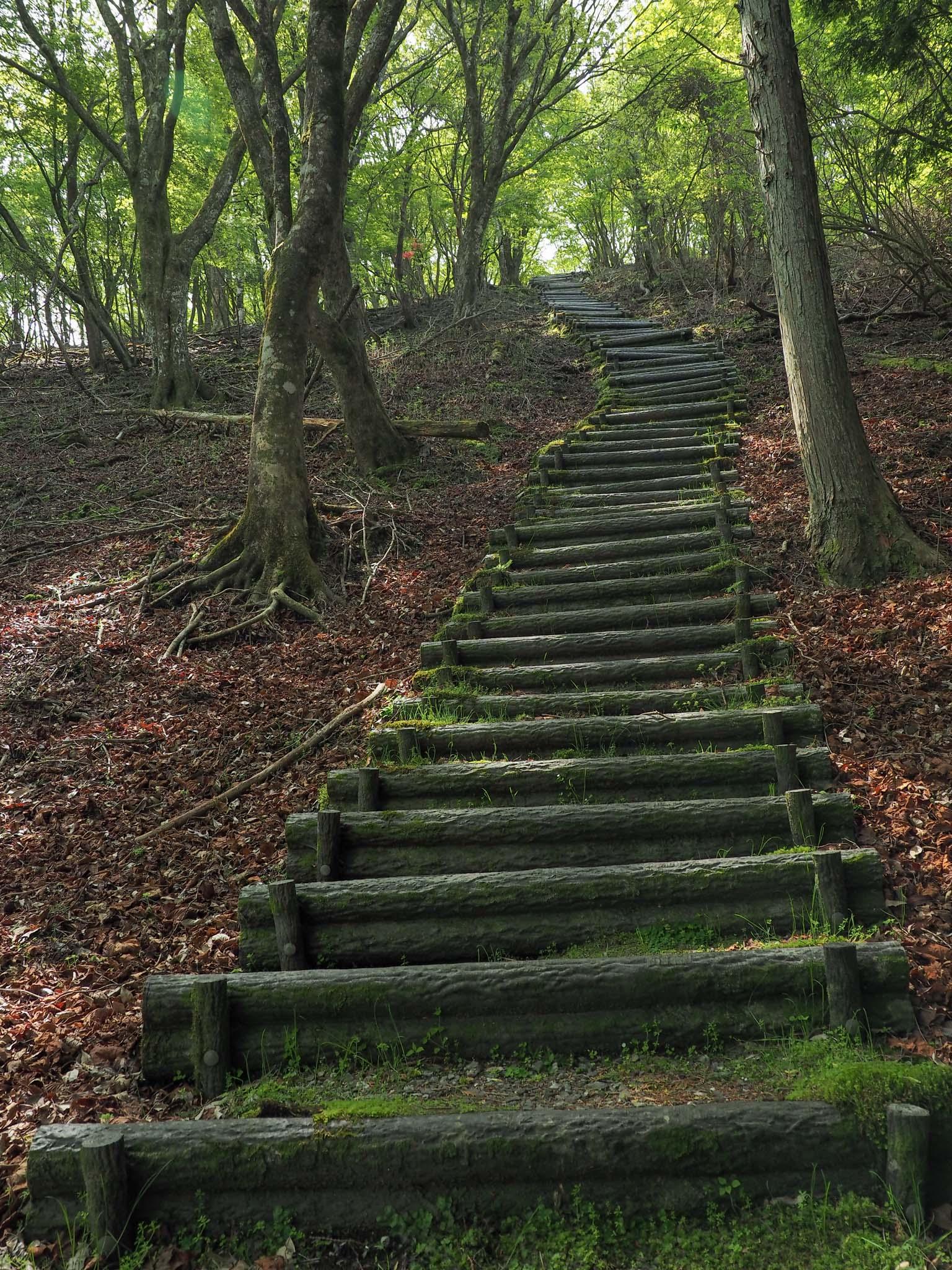 三重県 尼ヶ岳 東海自然歩道
