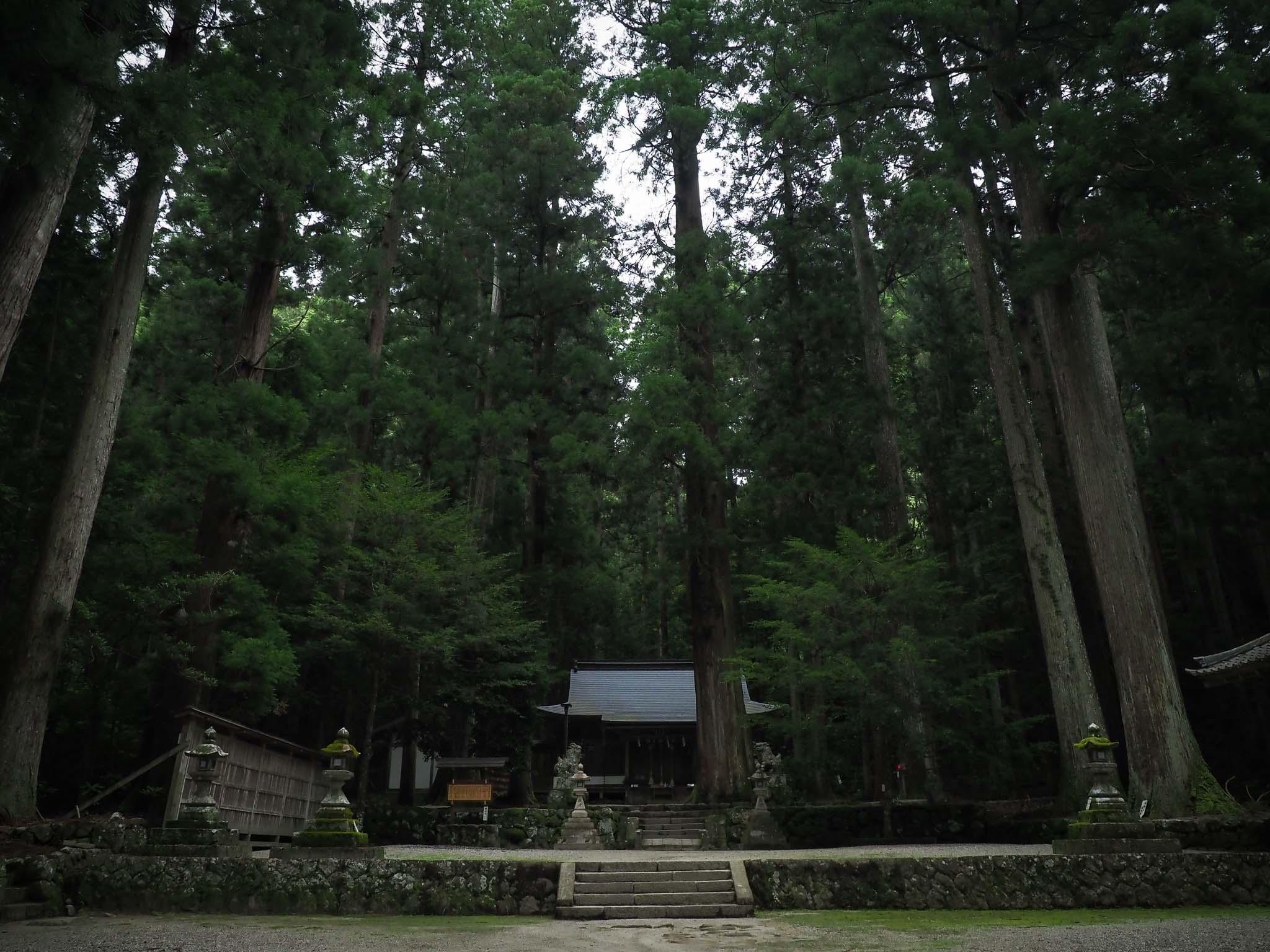 奈良県 龍穴神社