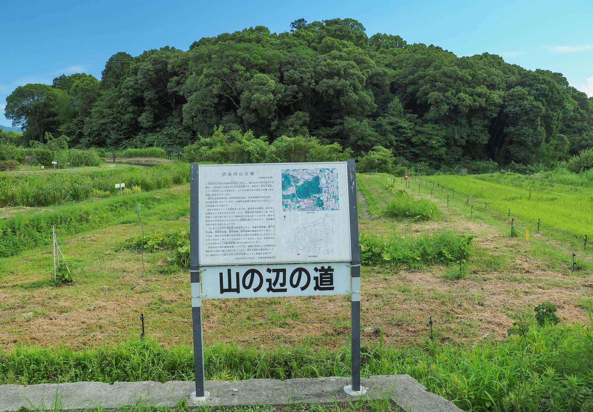 奈良県 渋谷向山古墳 景行天皇 山邊道上陵