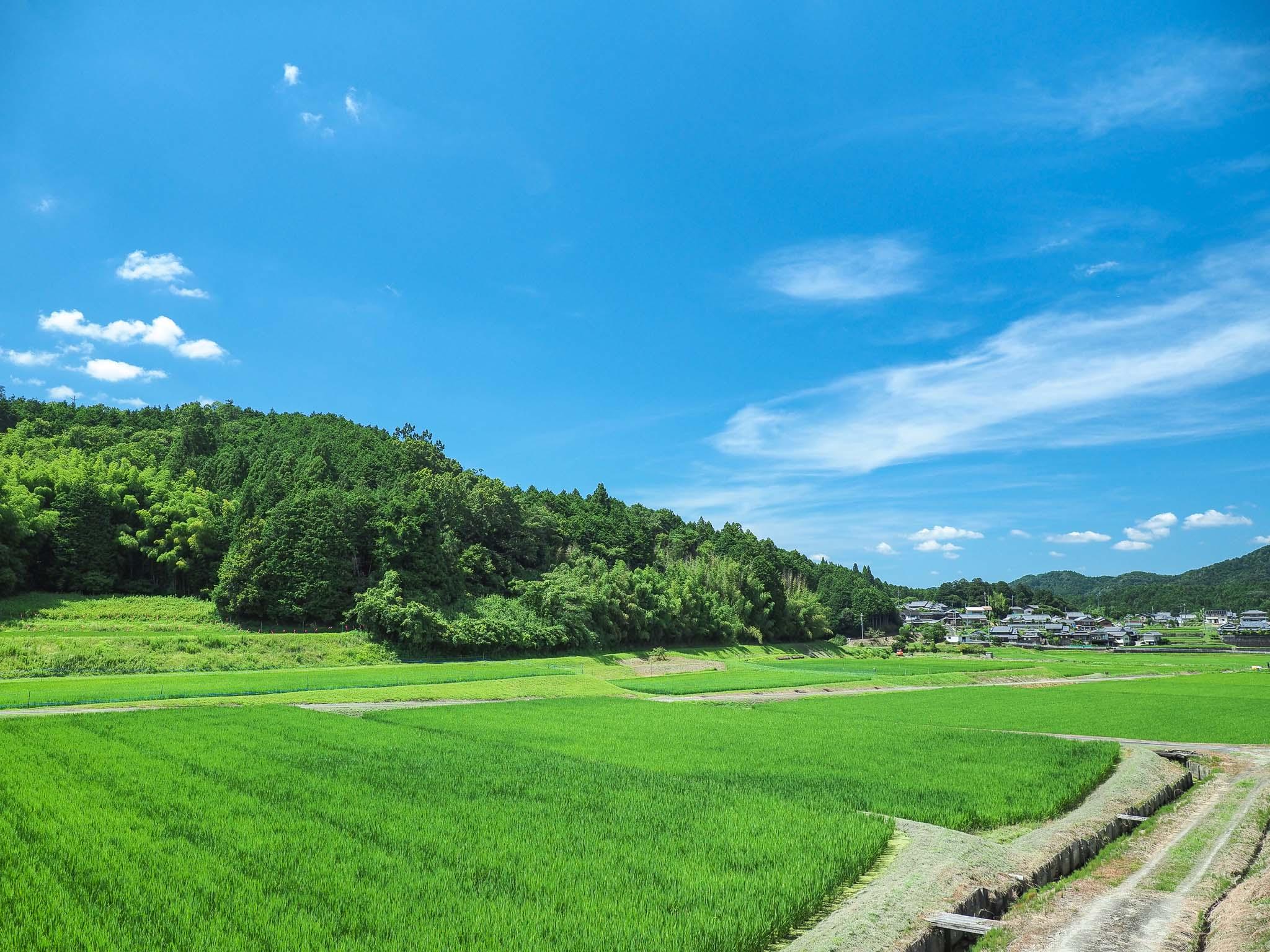 奈良県 阪原町