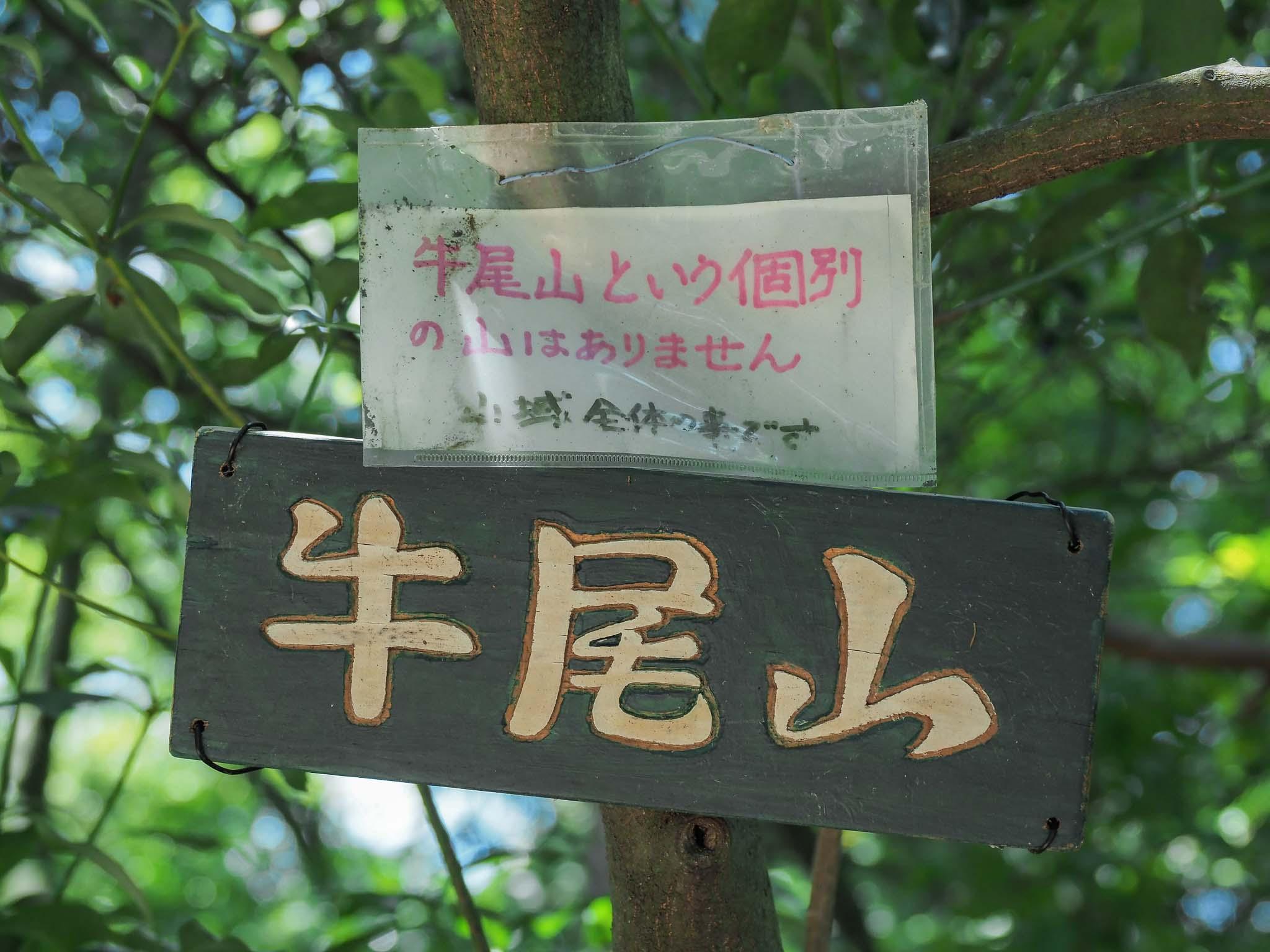 滋賀県 音羽山